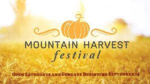 Harvest Festival at Blue Mountain